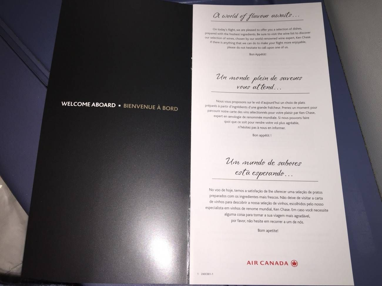 Air Canada B777 Business Class-09