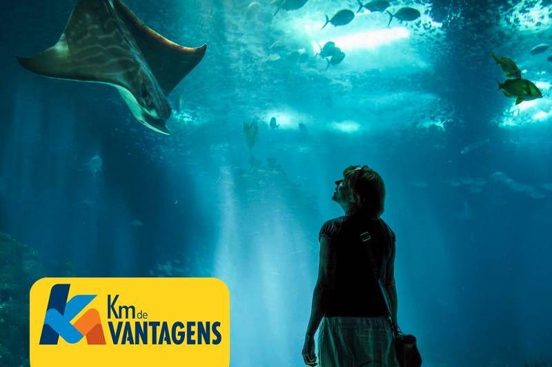 KM de Vantangens oferece descontos e ingressos em pontos turísticos no Brasil