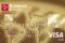 Bradesco Exclusive Visa Gold