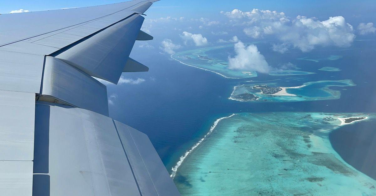 Maldivas nova taxa