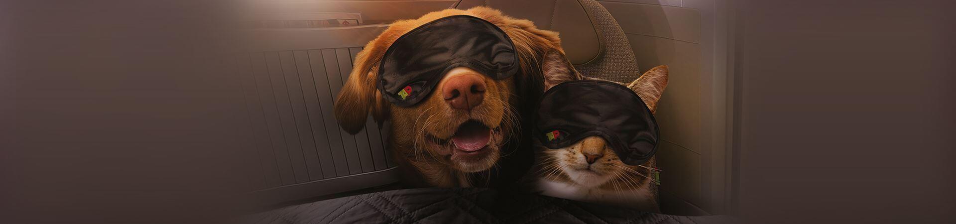 tap miles&go pets